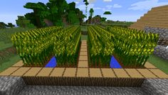 It looks as if the best farming useful resource that hasn't so far been implemented in Minecraft 1.11 and 1.10.2 is corn. Effectively now Simply Corn Mod p