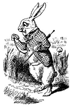 famous rabbits in history   the rabbit in the moon a belief found in asia