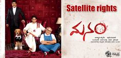 Manam Satellite rights sold for a fancy price http://www.iqlikmovies.com/news/2014/01/28/Manam-Satellite-rights-sold-for-a-fancy-price/news/3127