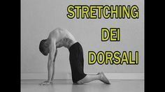 Stretching Parte 12: Dorsali