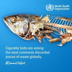World Health Organization Who Worldhealthorganization Profile Pinterest
