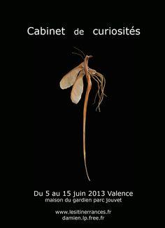 ©Damien Louche-pélissier. expo juin 2013