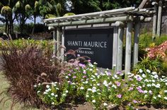 Welcome to Shanti Maurice #NiraMoments