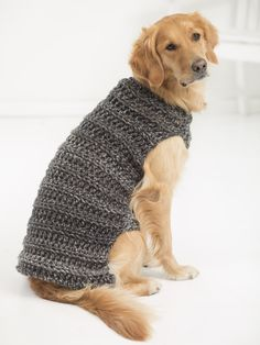 Watch This Video Incredible Crochet a Bear Ideas. Cutest Crochet a Bear Ideas. Crochet Marley, Crochet Lion, Cute Crochet, Crochet Animals, Crochet Dog Sweater Free Pattern, Crochet Dog Patterns, Blanket Patterns, Crochet Ideas, Large Dog Sweaters