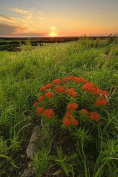 Sunset in the Flint Hills Kansas By Scott Bean Photography
