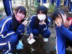 ENO Tree Planters from Japan, Nov 2012.