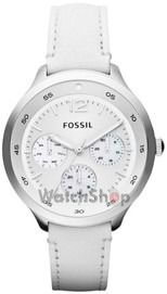 Fossil The Editor Multifunction White Leather Womens Watch Fossil Watches For Men, Used Watches, Ladies Watches, Wrist Watches, Lady, Leather Watch Bands, Watch Sale, Vintage Watches, Quartz Watch