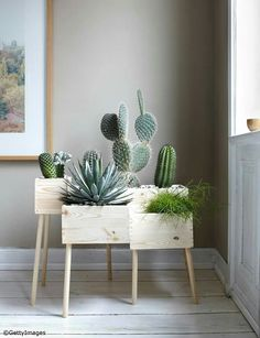 DIY: Blumenkasten aus Holz selber machen - Bild 13 - Kakteen und Sukkulenten You are in the right place about diy home decor Here we offer you the most - Wooden Crates Planters, Diy Wooden Crate, Wooden Flower Boxes, Wooden Boxes, Diy Casa, Plant Box, Plant Stands, Ideias Diy, Home And Deco