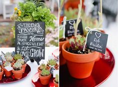 Eco Friendly and Practical Wedding Favors - Great for a garden wedding - or any wedding for that matter!