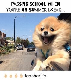Teacher summer has highs and lows, you miss your students, you need a break, you were going to do so much, you ended up lazing around. These memes nail it!