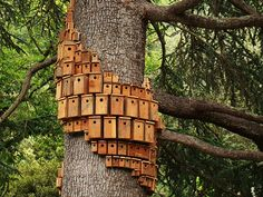 While this is technically an art piece I honestly think it might be one of the coolest bird house displays I have seen.  #birdhouse
