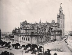 Seville cathederal