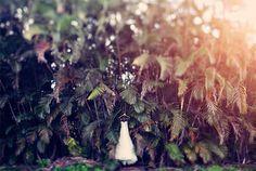 clayton austin via the pink and blue blog