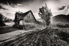 Magura Hills by Noam Mymon