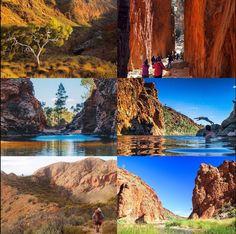 Le Larapinta trail, c'est l'un des plus beaux treks d'Australie 223 kms de sentiers et des récompenses à chaque section ! Trail, Turning 50, Grand Tour, Hiking, Camping, Tours, Mountains, Holiday, Nature