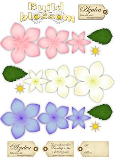 baileigh31's image  Printable flowers