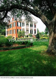 Rosalie, Natchez Mississippi - We visited lots of antebellum homes, this was one of them.