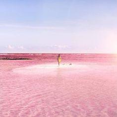 Lagoa rosa no México atrai turistas do mundo inteiro