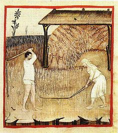 Harvesting spelt: The Theatrum of the Casanatense - late 14th century. Interesting that both the man and woman are in their underwear.