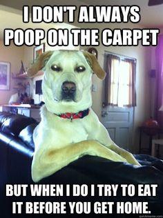 good ol fashioned dog doodoo humor