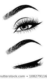 Imagens, foto stock e imagens vetoriais similares de Illustration Womans Sexy Luxurious Eye Perfectly - 1082791169 Perfect Eyebrow Shape, Perfect Eyebrows, Illustration Rouge, Eyebrows Sketch, Eyebrow Beauty, Perfect Red Lips, Facial Aesthetics, Lashes Logo, Business Hairstyles