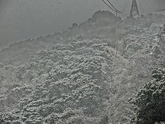 トピックス画像  1/14鋸山積雪