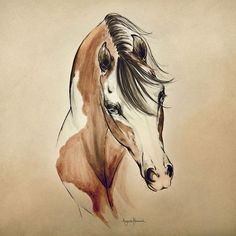"""Limited Edition """"Cowgirl"""" represents a unique pairing of watercolor and brush pen. Its distinct style is slightly reminiscent of the hand painted illustrations seen in old Western posters at the turn(Beauty Art Watercolor) Horse Drawings, Animal Drawings, Art Drawings, Pencil Drawings, Pencil Art, Arte Equina, Horse Artwork, Horse Paintings, Pastel Paintings"""