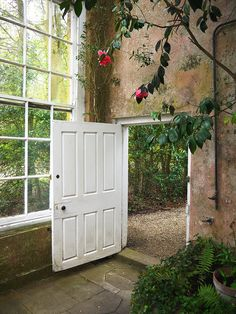 orangery door - by Helen White Photography, via Flickr.