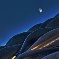 Moon over the Bloedel conservatory in Vancouver Ivan Meljac