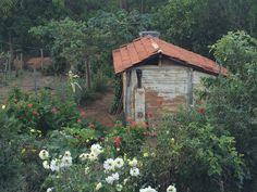 Área rural de Bueno Brandão - Serra da Mantiqueira (Minas Gerais - Brasil)