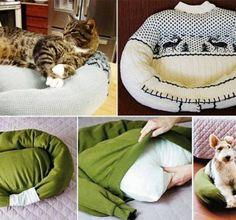 Créez un «lit» pour votre chat !