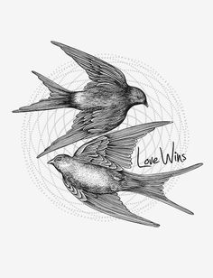Two birds flying wit