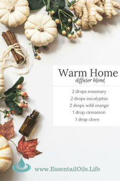 Warm Home DIY Diffuser Blend : Warm up your spirit with this Warm Home DIY essential oil blend featuring rosemary, eucalyptus, wild orange, cinnamon, and clove essential oils. perfect for days where you just want to pretend the floor is hot lava! Fall Essential Oils, Clove Essential Oil, Essential Oil Diffuser Blends, Essential Oil Uses, Cinnamon Essential Oil, Essential Oil Combinations, Diffuser Recipes, Belleza Natural, Back To Nature