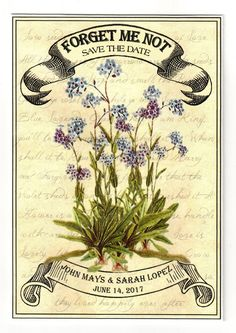 Vintage Forget Me Not Save the Date Seeds 2017 Wedding Trends, Wedding 2017, Our Wedding, Seed Wedding Favors, Seed Packets, Forget Me Not, Save The Date, Special Events, Vintage Inspired