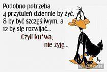 ;-) My People, Motto, Jokes, Lol, How To Plan, My Love, Quote, Life, Husky Jokes