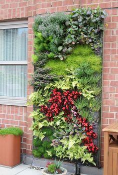 original diseño de jardines verticales
