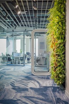 Plant wall // office greenery at ECommPay Offices - Riga
