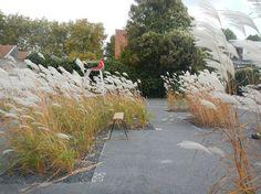 Texture Garden by Studio Basta and Wagon Landscaping 04 « Landscape Architecture Works | Landezine
