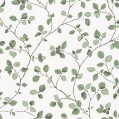 Aesthetic Patterns Discover Hassel by Sandberg - Green / White - Wallpaper : Wallpaper Direct Hassel Green / White wallpaper by Sandberg Wallpaper Direct, Wallpaper Size, Green Wallpaper, Room Wallpaper, Flower Wallpaper, Pattern Wallpaper, Wallpaper Backgrounds, Iphone Wallpaper, Sandberg Wallpaper