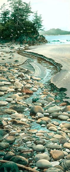 Carol Evans WATERCOLOR - Seabound Stream