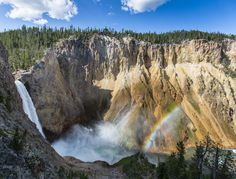 4 Things to Do in Yellowstone National Park with your kids