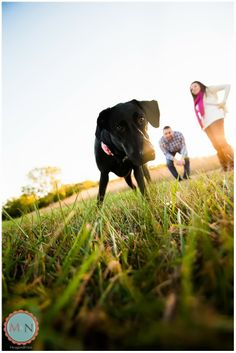 Engagement photography with your dog; Meagan and Nate Photography