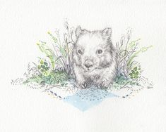 Or this one. | 29 Totally Adorable Etsy Items For People Who Really Love Wombats