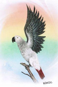 African Grey Parrot Parrot Parrots Parrot by ArtbyWeeze on Etsy Parrot Painting, Wine Cork Art, African Grey Parrot, Grey Art, Pet Memorials, Bird Art, Rainbow Colors, Etsy, Birds