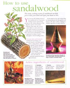 Herbs:  How to Use #Sandalwood. Be sure to only use Australian sandalwood as African is endangered.