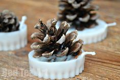 Cone Crafts: Fire Starters Pine Cone Crafts - make your own Fire Starters. I think packaged up, these would make a great gift too!Pine Cone Crafts - make your own Fire Starters. I think packaged up, these would make a great gift too! Diy Christmas Fireplace, Christmas Crafts, Christmas Christmas, Cozy Fireplace, Pinecone Fire Starters, Camping Fire Starters, Country Crafts, Diy Candles, Candle Wax