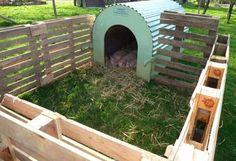 Outdoor mini pig pen made from pallets The Farm, Small Farm, Mini Farm, Pig Shelter, Goat Pen, Pot Belly Pigs, Pig Pen, Mini Pigs, D House