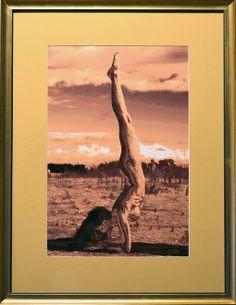 Death of a Yogi Bikram Yoga Poses, Mona Lisa, Death, Artwork, Painting, Work Of Art, Auguste Rodin Artwork, Painting Art, Artworks