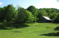 Double E Farm To http://houston.kidsoutandabout.com/