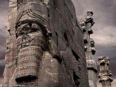 Persepolis   HOME SWEET WORLD